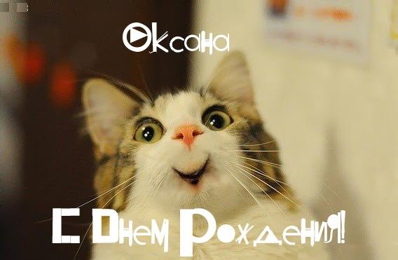 Смешная картинка с Днем Рождения Оксана