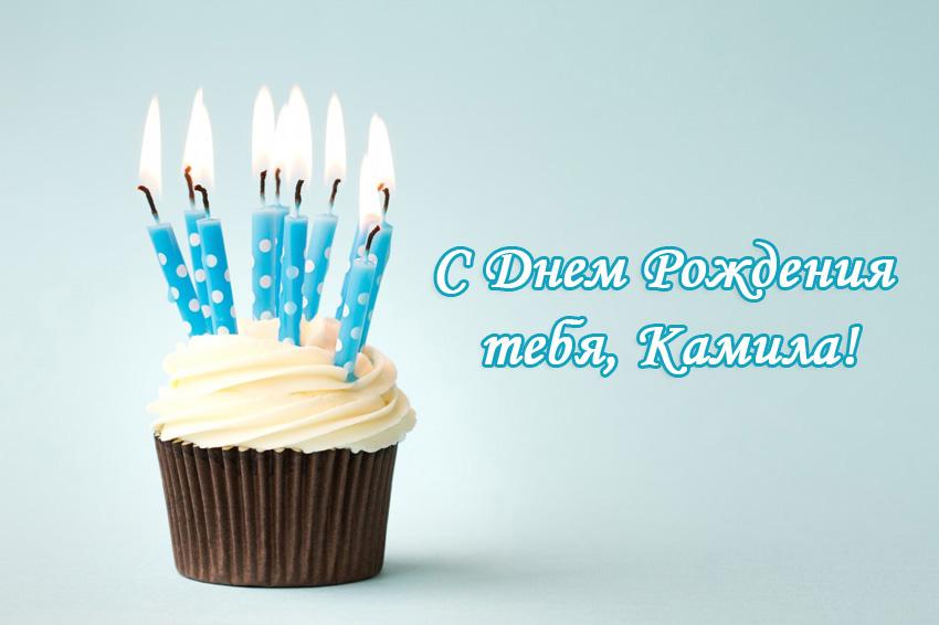 Поздравление с днём рождения камилле 57