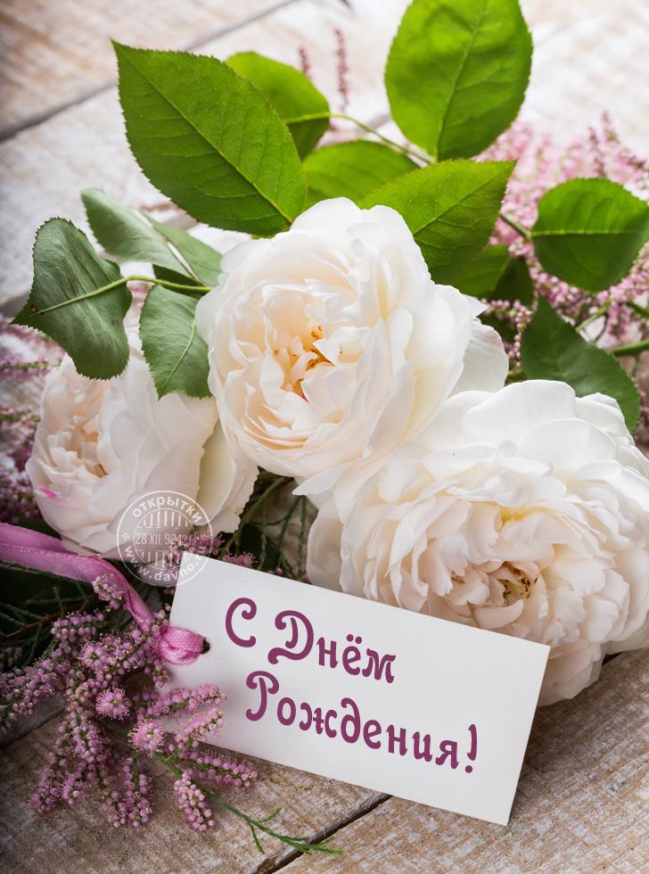 http://dayname.ru/noname/imgbig/dayname_ru_253.jpg