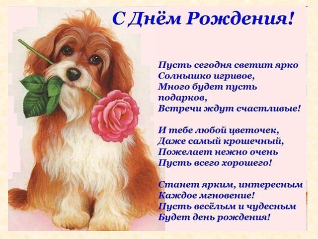 Стихи с поздравлениями на день рождение на татарском языке 257