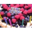 Happy Birthday! Малинка, тутовничек